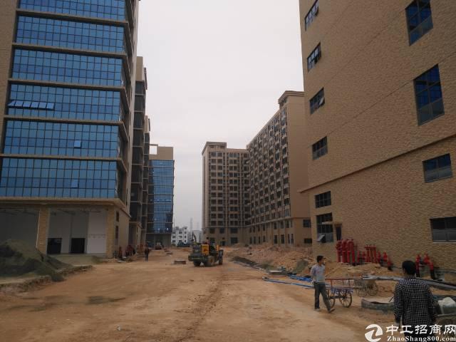 (出租)凤岗新出原房东10万㎡带红本喷淋火爆招商