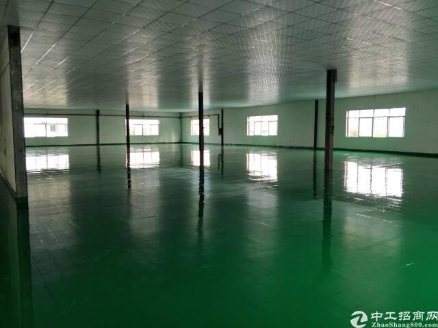东莞市万江区新出楼房厂房出租-图3