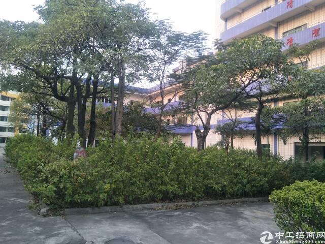 惠州水口花园式工业园区独栋厂房8900平方招租-图6