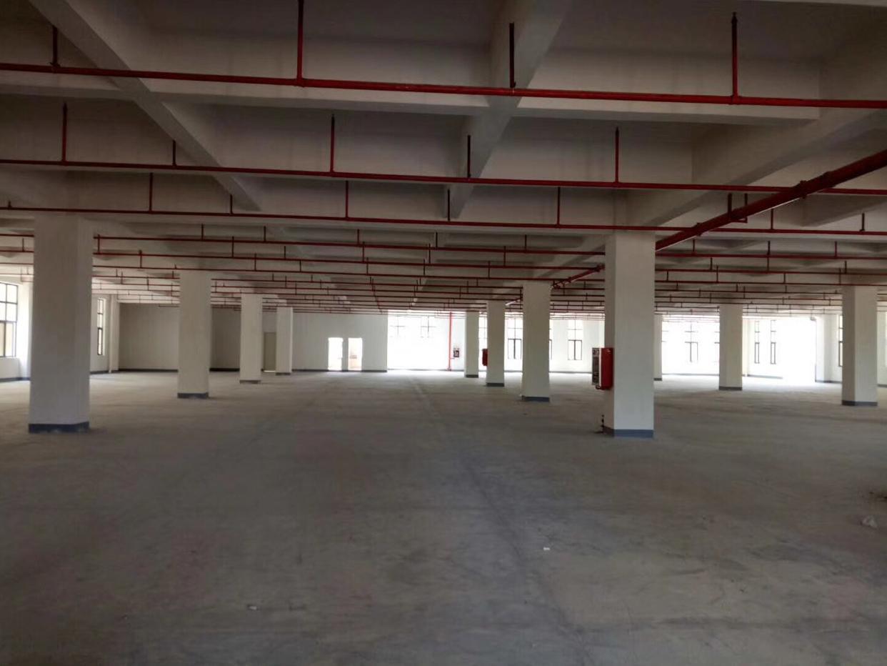 沙井原房东1-3层15800平方带豪华装修招商大小分租-图3
