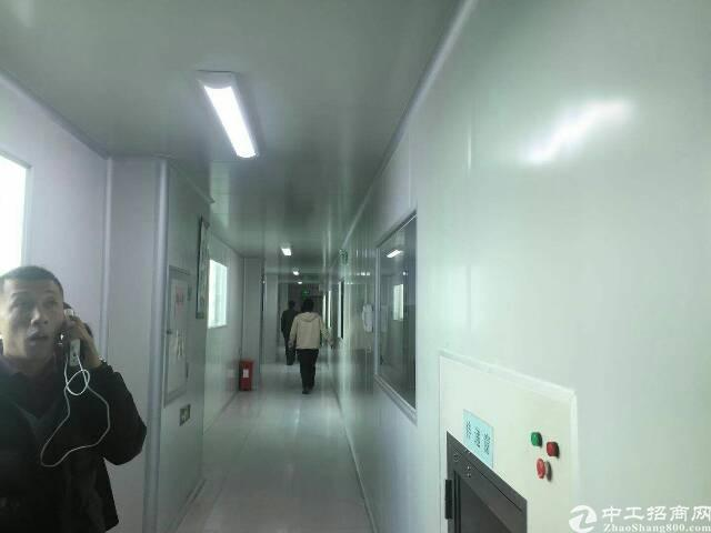 福永高速附近新出楼上带装修厂房1900平米出租