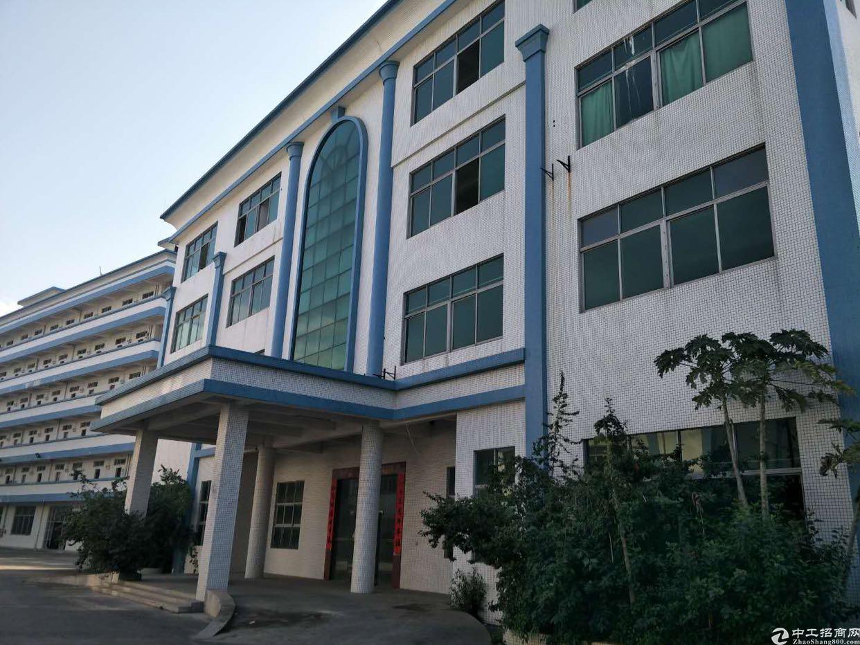 光明新区2万平米红本独院厂房出租适合电子LED医疗设备-图3