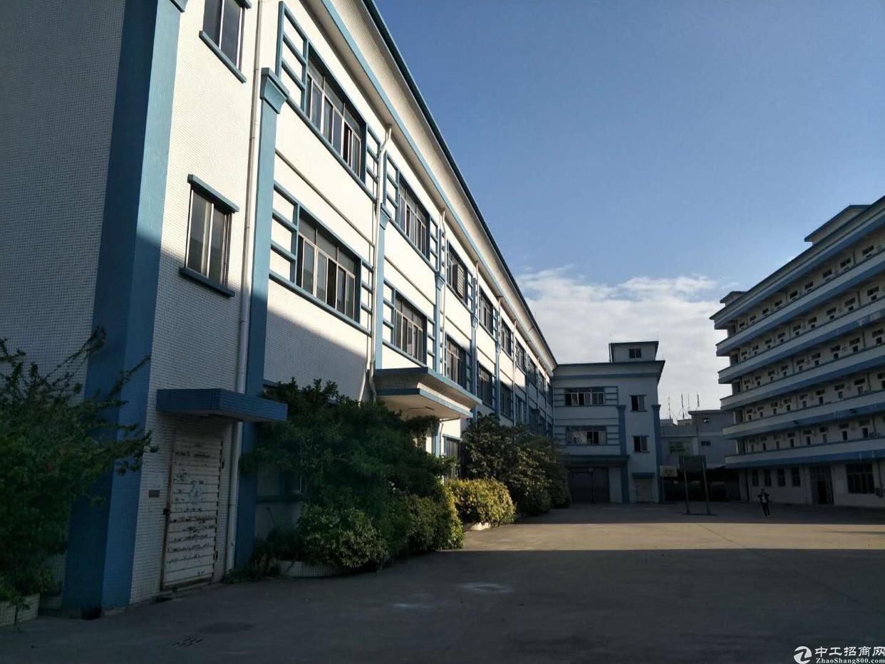 光明新区2万平米红本独院厂房出租适合电子LED医疗设备-图5