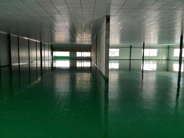 东莞市万江区新出楼房厂房出租