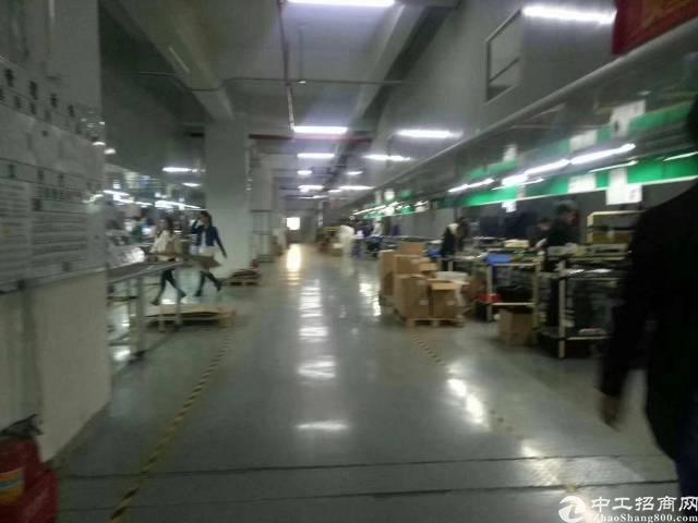 黄江长龙实际面积1000平方厂房出租
