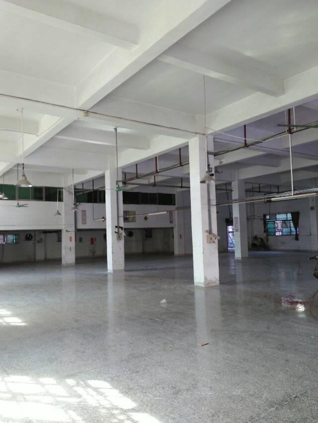 东莞石排镇原房东标准厂房分租-图4