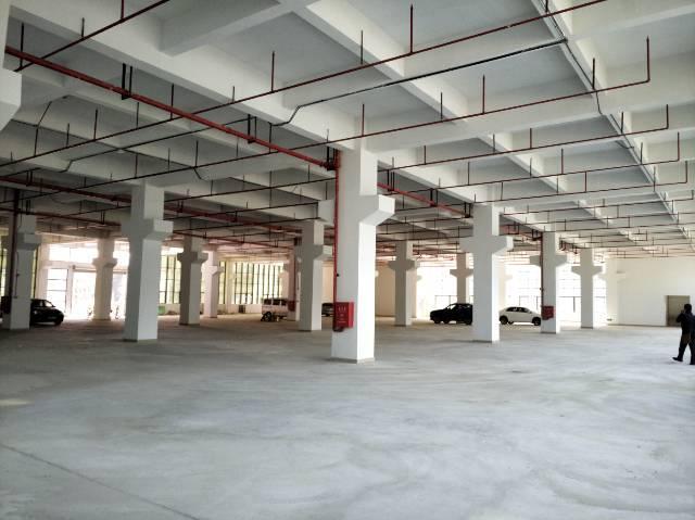 凤岗大量200至6000平方厂房、仓库、办公楼出租