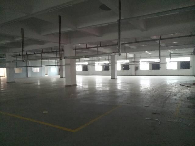 长安乌沙大型工业园楼上4000豪华装修