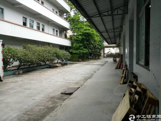 独院单一层厂房2000平方出租