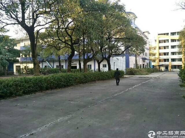 清溪镇中心区花园式独院厂房68000平方招租可分租