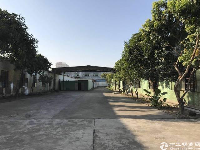 沙井107国道南埔路边9000平方独院钢构厂房招租