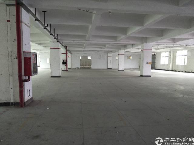 横岗六约私人厂房整层2200平出租价格25块