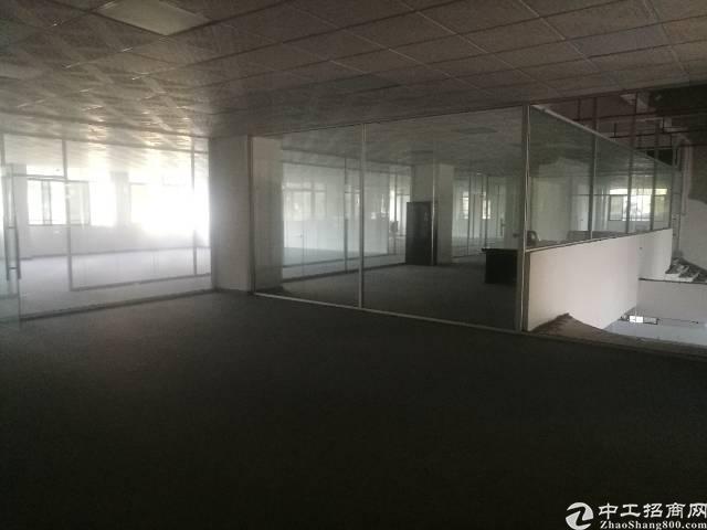 公明楼村大型园区独门独院厂房10000平米-图3