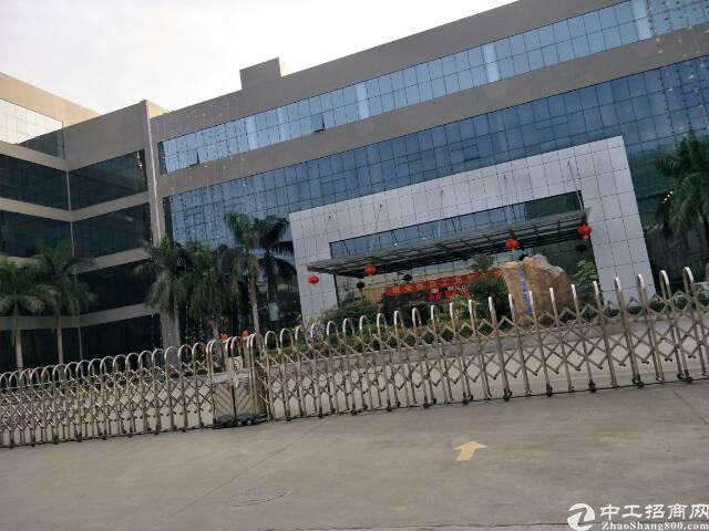 长安镇安路旁新出1500平米精装修厂房-图5