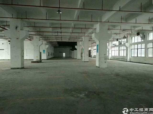 公明楼村大型园区独门独院厂房10000平米-图2