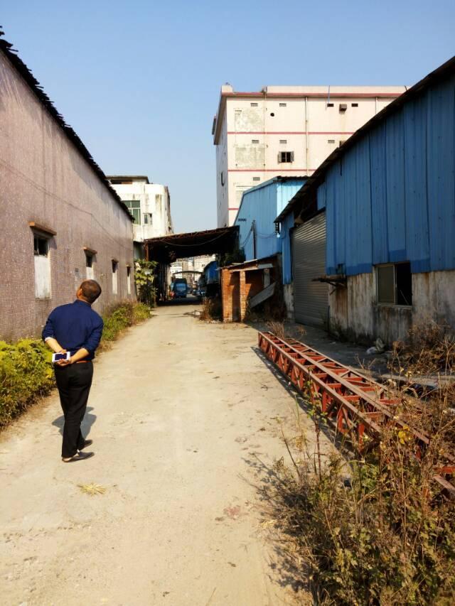 增城新塘镇大墩工业区一楼铁皮房出租800平方