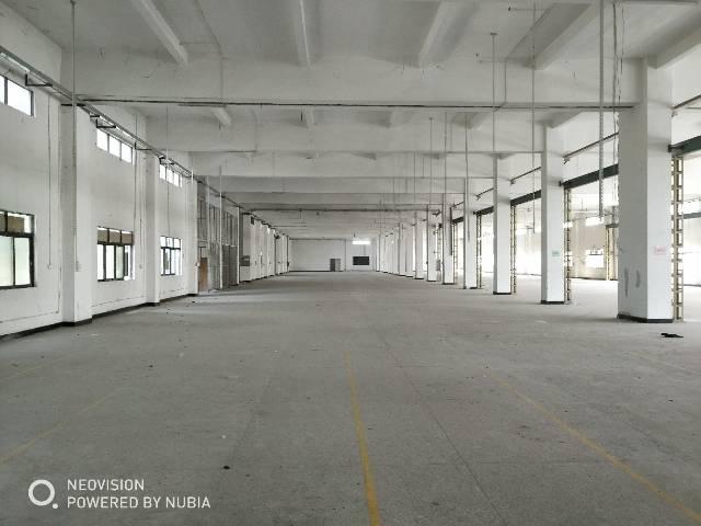 樟木头新出楼上1200平方标准厂房,空地超级大,进出大车方便