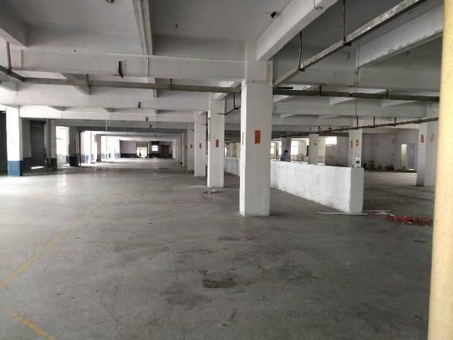 三屯标准一楼4000平米厂房招-图3