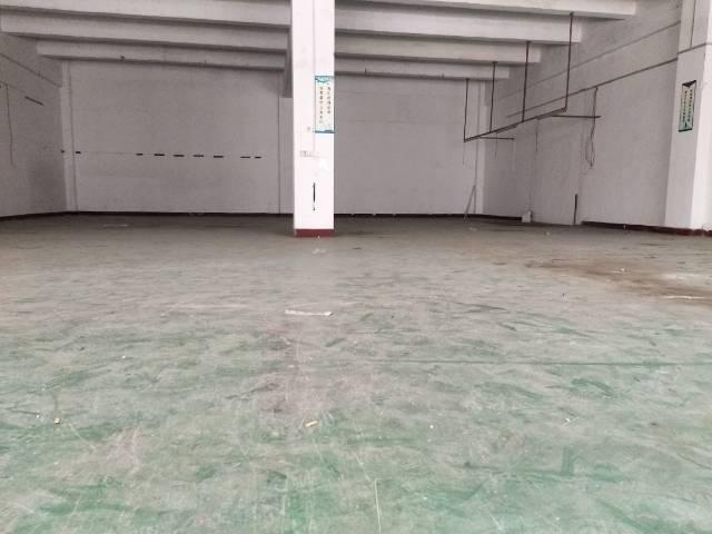 横沥新出标准厂房一楼500平方-图3