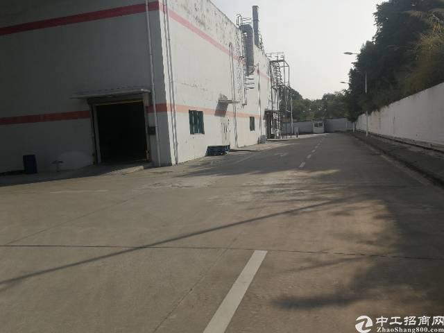 西丽单一层10米厂房20000平方招租