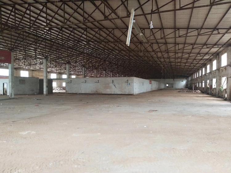 坑梓龙田新出独院钢构出租12000平米