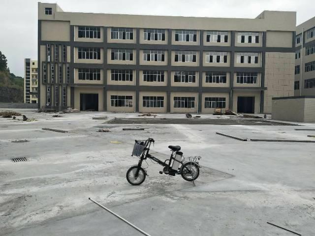 新出原房东20000平方独门独院