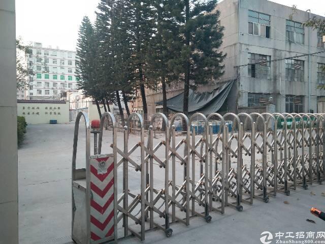 惠州新圩一楼钢构厂房1500平米带现成水电装修
