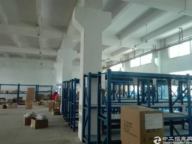 沙井大王山新出房东厂房一楼2300平方出租-图5