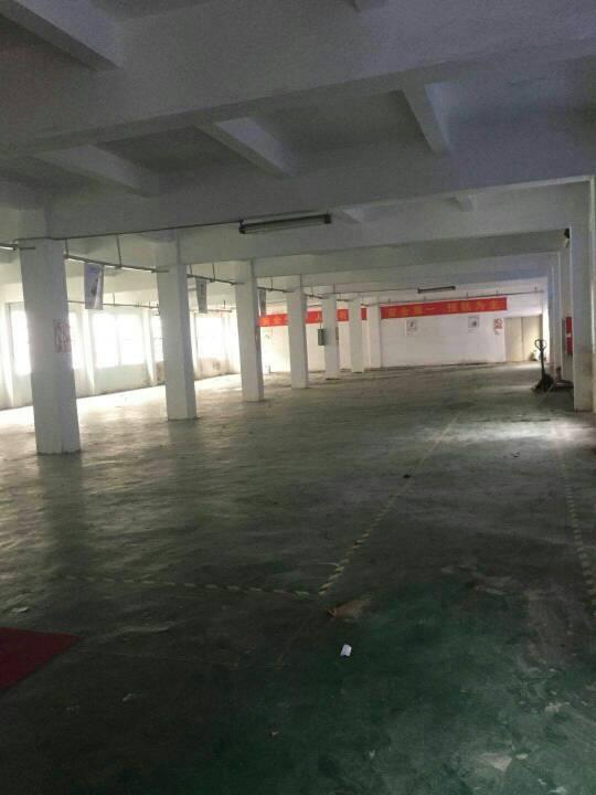 平湖凤凰大道带办公室装修三楼1100平方米出租-图2