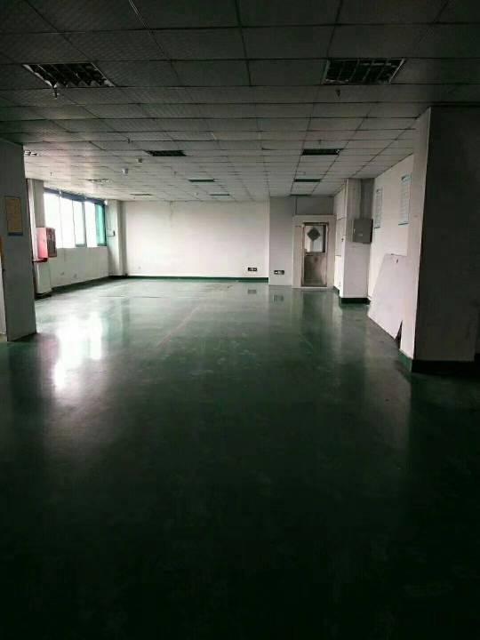 公明塘尾新出楼上精装修厂房800平米-图6
