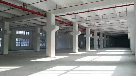 平湖全新建的厂房6800平方招租-图4