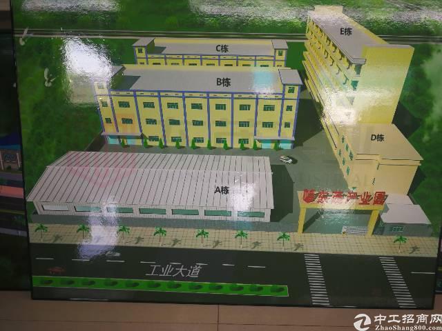 黄江高大上工业园分租,大小随意
