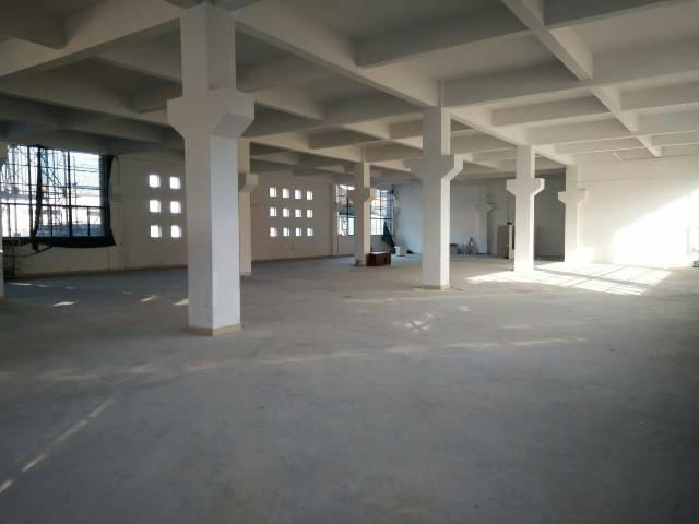 平湖全新建的厂房6800平方招租-图8