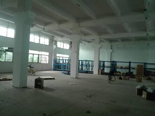 沙井大王山新出房东厂房一楼2300平方出租