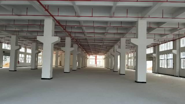 原房东独门独院20000平方标准厂房出租