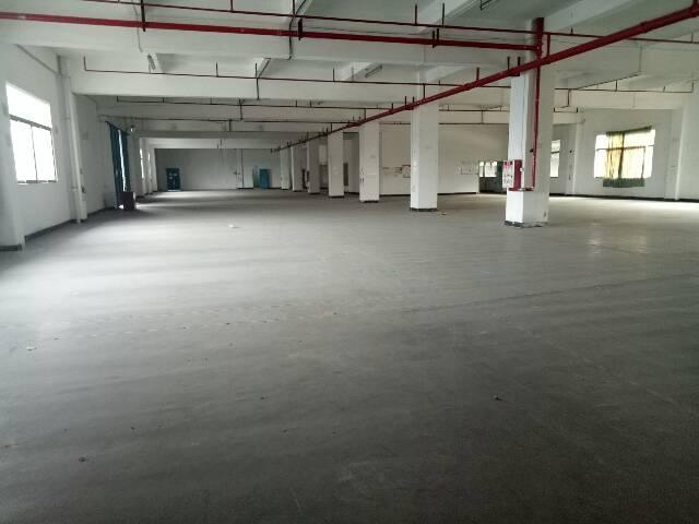 虎门镇村委独门独院厂房加宿舍5218平方出租不分租