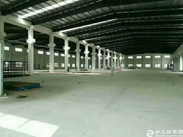 龙岗新出独院钢构3500平米厂房出租