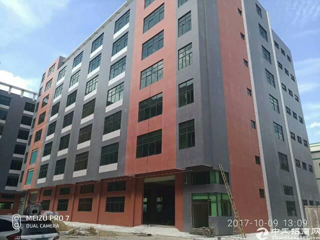 平湖新建厂房7800平方独院厂房出租