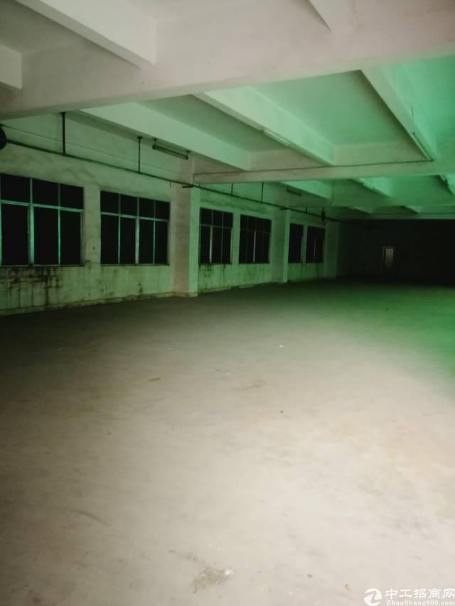 虎门镇东风社区 百花市场旁独院厂房5200平方
