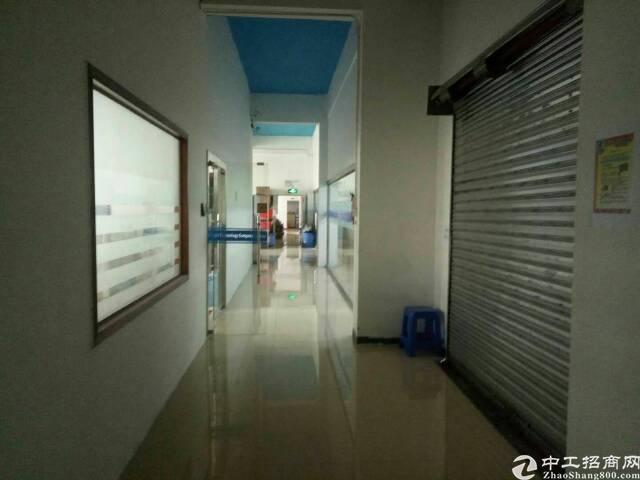 华南城旁带豪华装修办公室450平米出租,有电梯!