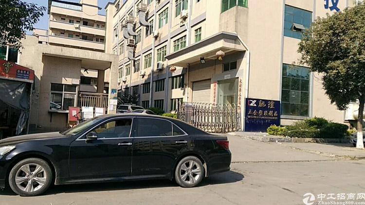 沙坑二路新出办公厂房低价招租600平米-图4