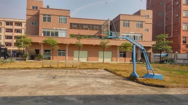 横沥镇惊现原房东花园式钢构独院