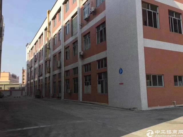 塘厦凤凰岗1440平方标准一楼厂房出租水电齐全-图2