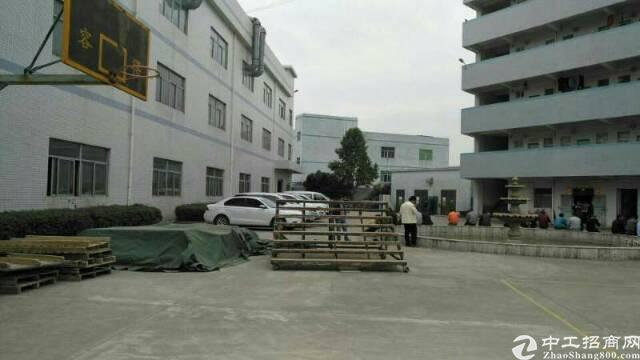 大岭山镇向东村新出楼上带装修厂房一整层1600平米