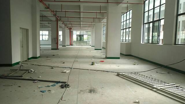 大岭山连平房东低价分租标准一楼厂房3000平方-图2
