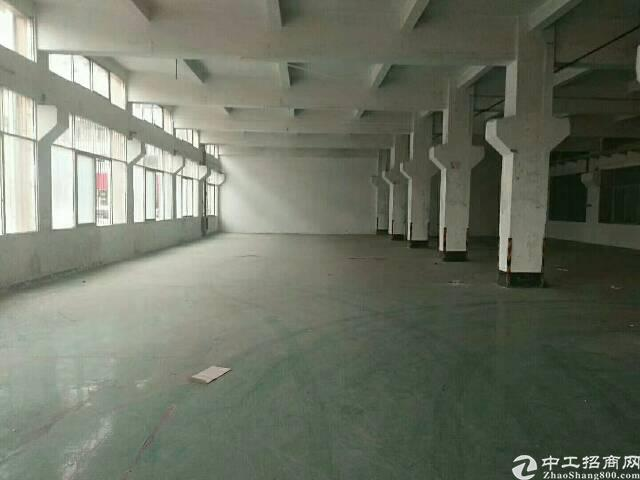 平湖辅城坳印刷或君子布一楼600平方米原房东厂房招租-图2