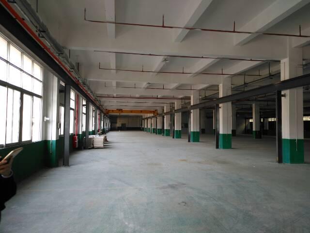 大岭山连平房东低价分租标准一楼厂房3000平方