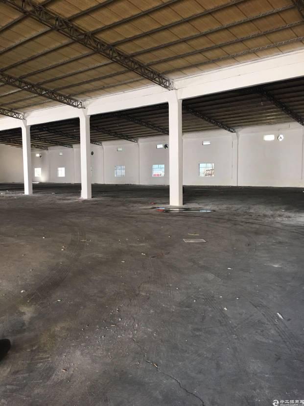 坂田南坑坂银通道出口一楼1200平钢构
