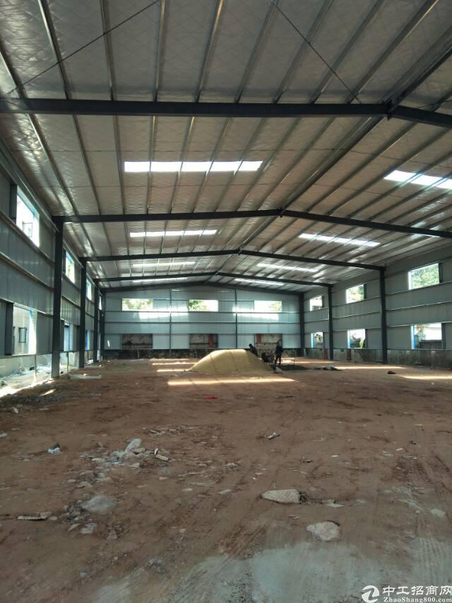 塘厦中心新建钢构1150,原房东零公摊适合仓库客户