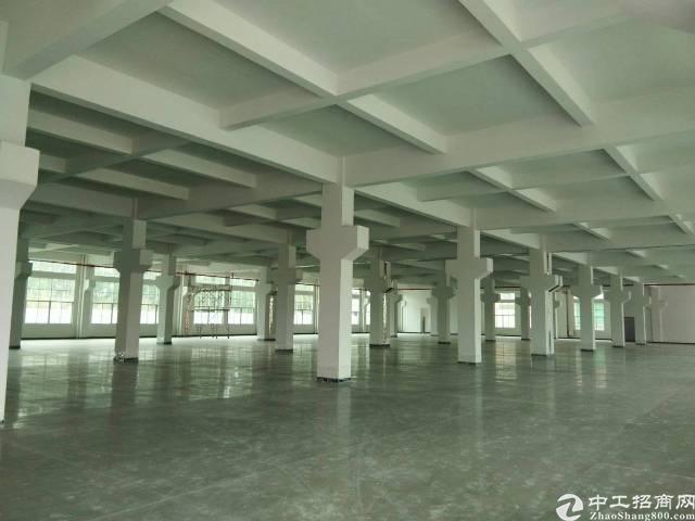 石排镇独院厂房分租一楼2000平方